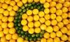 Μύθοι και αλήθειες για τη βιταμίνη C