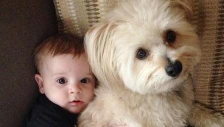 Πιο υγιή τα μωρά με σκύλο!
