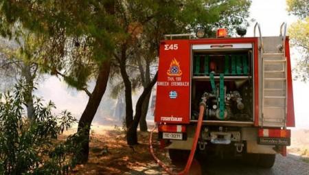 Πολύ υψηλός κίνδυνος πυρκαγιάς στο νότιο τμήμα της χώρας