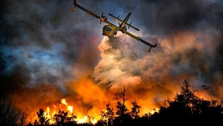 Πυρκαγιά σε τουριστική περιοχή στη Λευκάδα