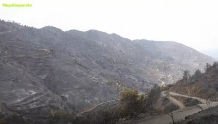 Κύπρος: Τέσσερις νεκροί ο τραγικός απολογισμός (video)