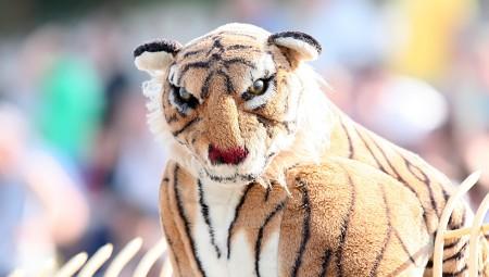 Έτοιμος για απολύσεις ο Τίγρης: του πρότειναν στόπερ με 2,5 εκατ. ευρώ τον χρόνο!