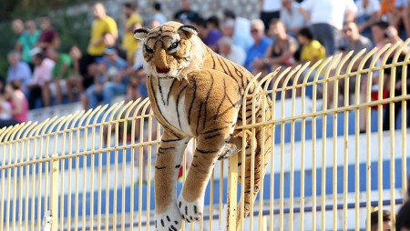 «Η σχέση μου (με τον Παναθηναϊκό) είναι υπεράνω χρημάτων»! Έκανε «like» ο τίγρης!