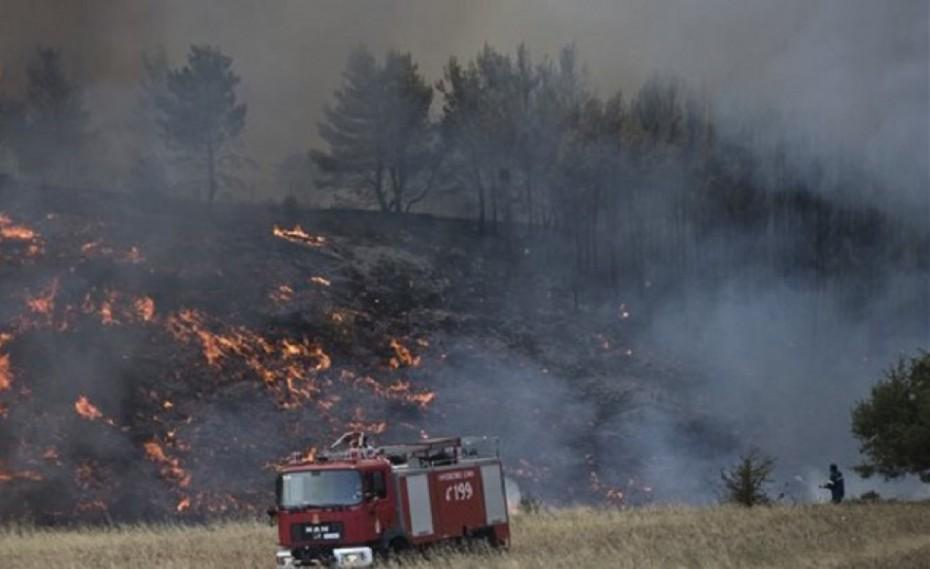 Πρώτη μήνυση με ονοματεπώνυμο για τις φωτιές στην Αν. Αττική