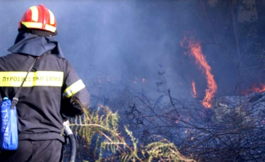 Πυρκαγιά σε εξέλιξη σε δασική έκταση στο Ρέθυμνο...
