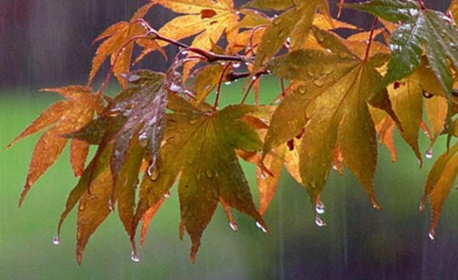 Πτώση θερμοκρασίας και καταιγίδες την Παρασκευή