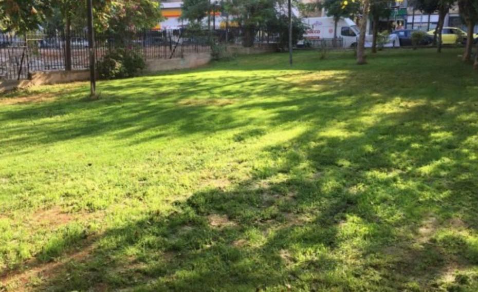 Δήμος Πειραιά: Ανάπλαση και συντήρηση πρασίνου σε όλες τις γειτονιές!