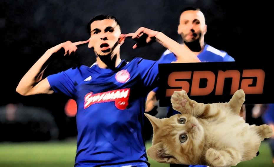 Τσακωμένα με την αλήθεια τα γατάκια του SDNA