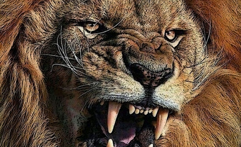 Παγκόμια ημέρα… λιονταριού! (photo)