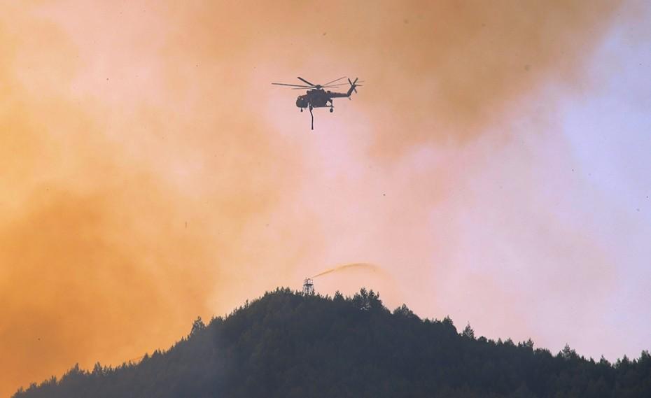 Καταγγελία για εμπρηστή «Όπου σταματούσε φούντωνε φωτιά» (video)